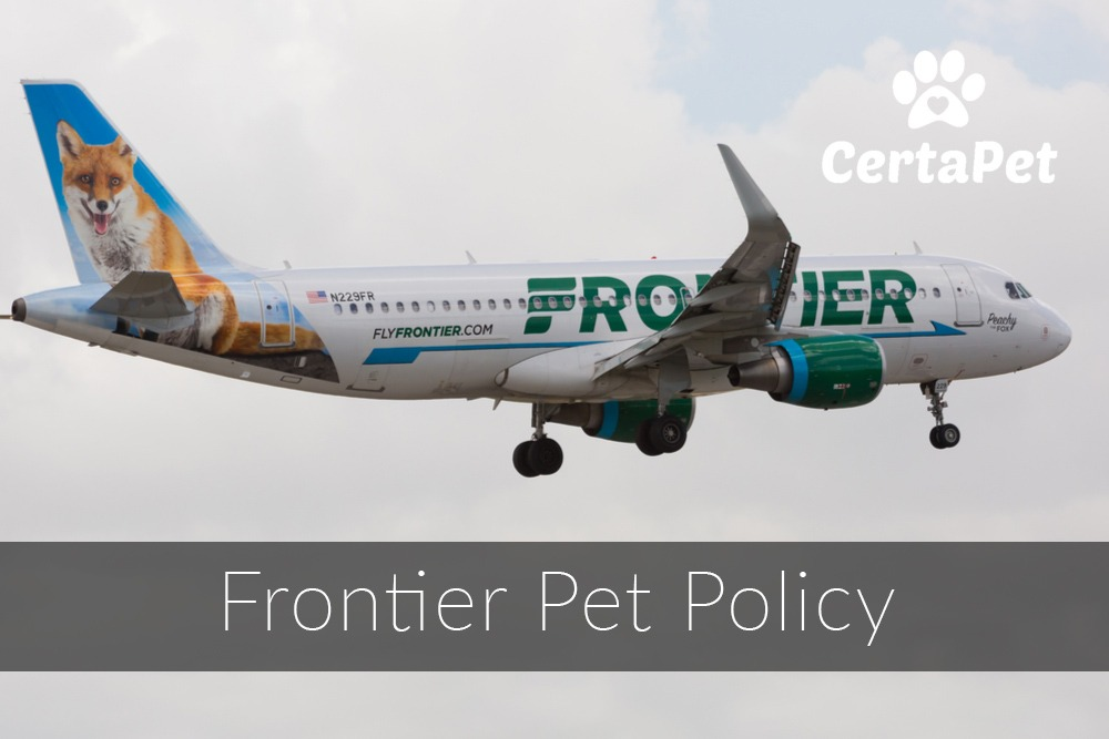 frontier airlines pet policy