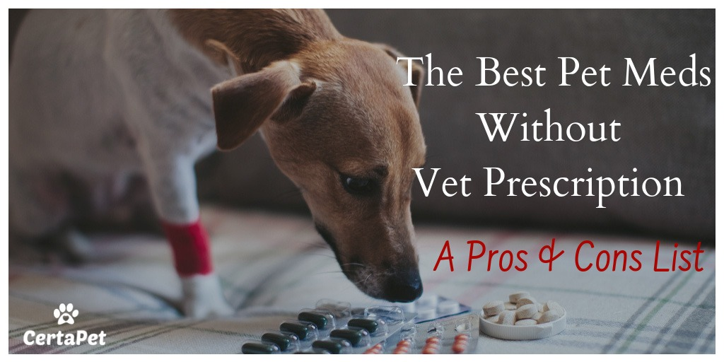 The Best Pet Meds Without Vet Prescription A Pros And Cons List Certapet