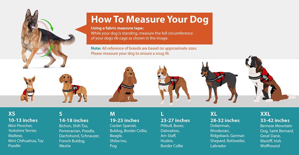 emotional support dog vests
