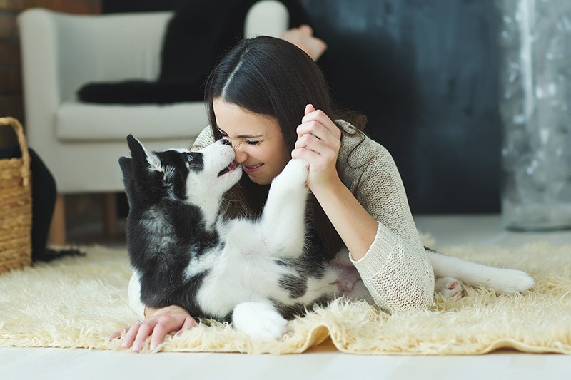 Woman lying on the carpet playing with her ESA dog