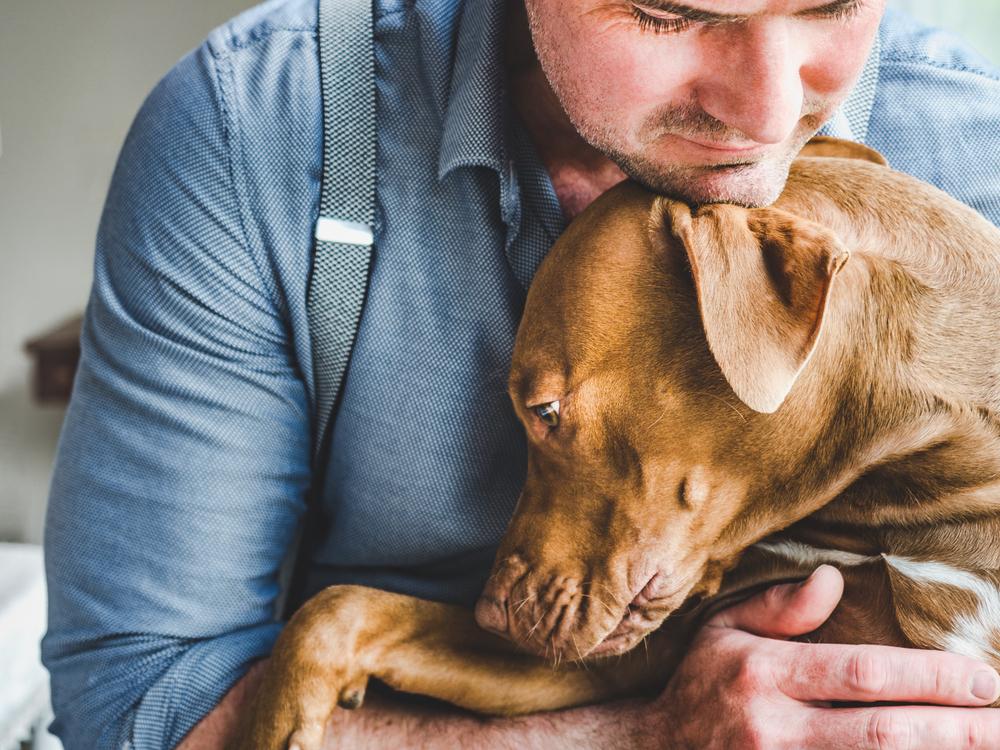 psychiatric service dog types of tasks