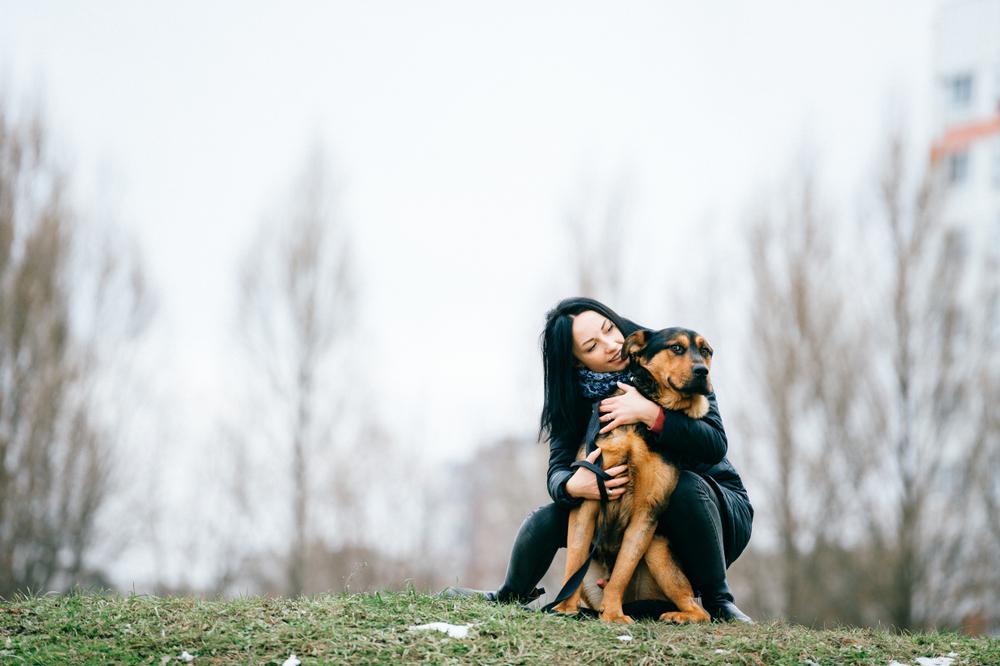 bipolar service dog adoption